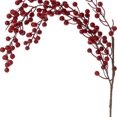 χριστουγεννιάτικο κλαδί
